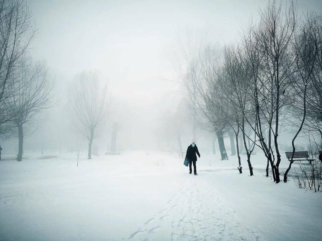 注意!沈阳明晚再迎中到大雪!寒潮、大风来袭,最低温降至