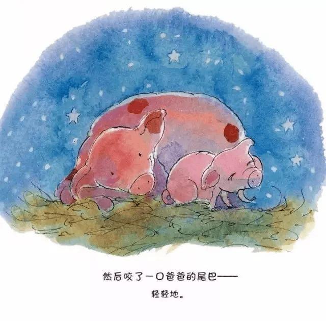 金宝晚安故事丨《皮皮猪和爸爸》最爱是亲人  第28张