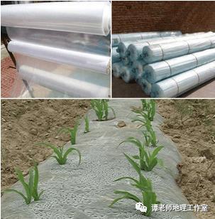 塑料地膜的作用原理_塑料地膜图片