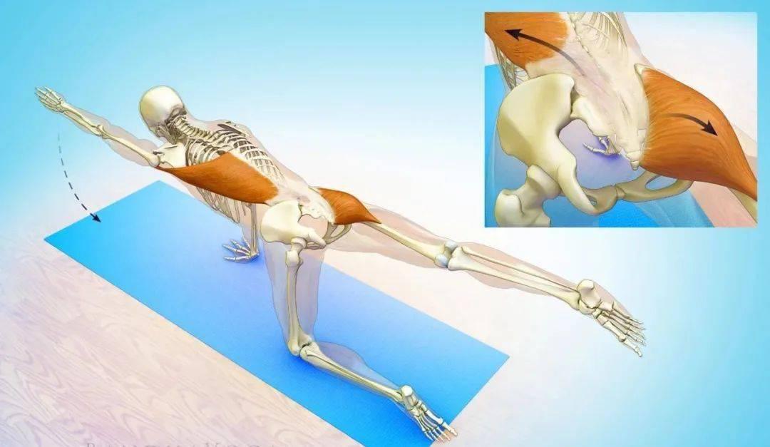 练瑜伽大腿粗壮?可能你一直练错啦!