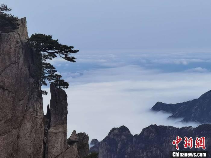 安徽黄山:日出东方云瀑万顷