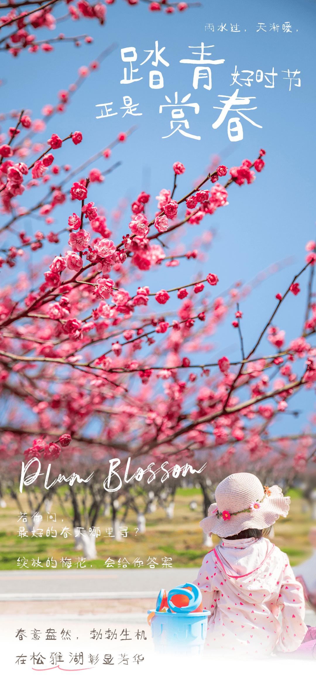 踏青赏花好时光,在长沙与花儿来一场春日邂逅!