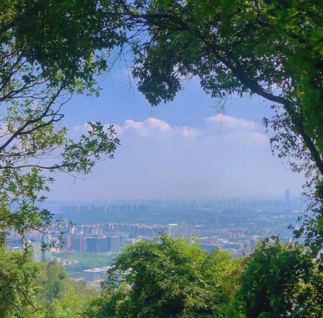免费!广州这5个小众爬山点,避开人从众!假期休闲放松好去处!