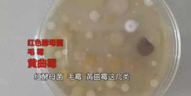 沐鸣3测速登录-首页【1.1.4】