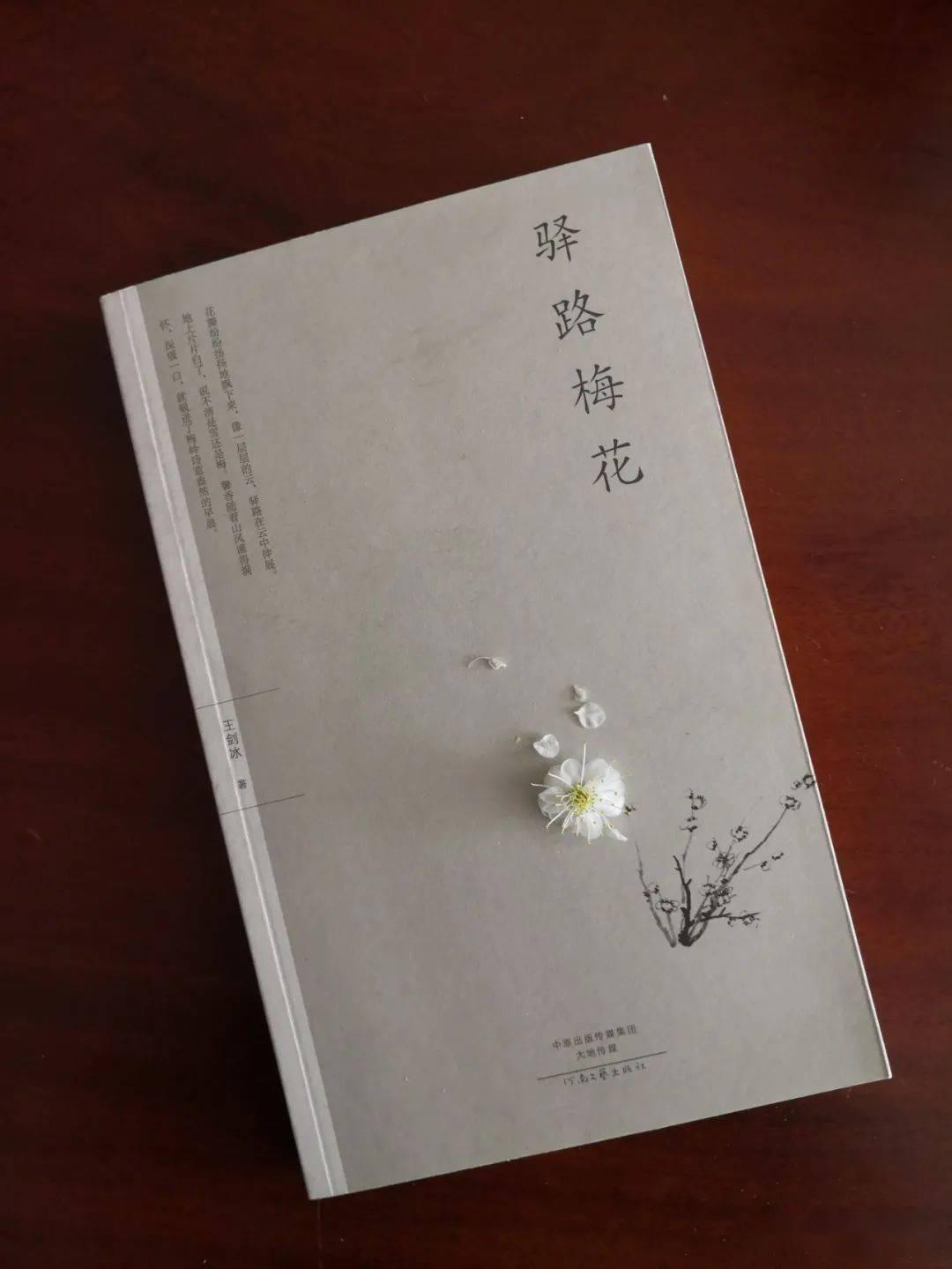 樱花动漫:读王剑冰先生的《驿路梅花》 网络快讯 第1张