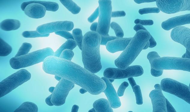 人體免疫系統完全失靈,科學家在深海發現全新細菌_研究
