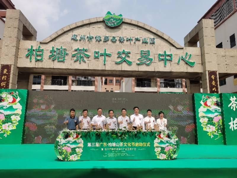 以茶兴业以茶富农以茶扬文,第三届广东柏塘山茶文化节启动