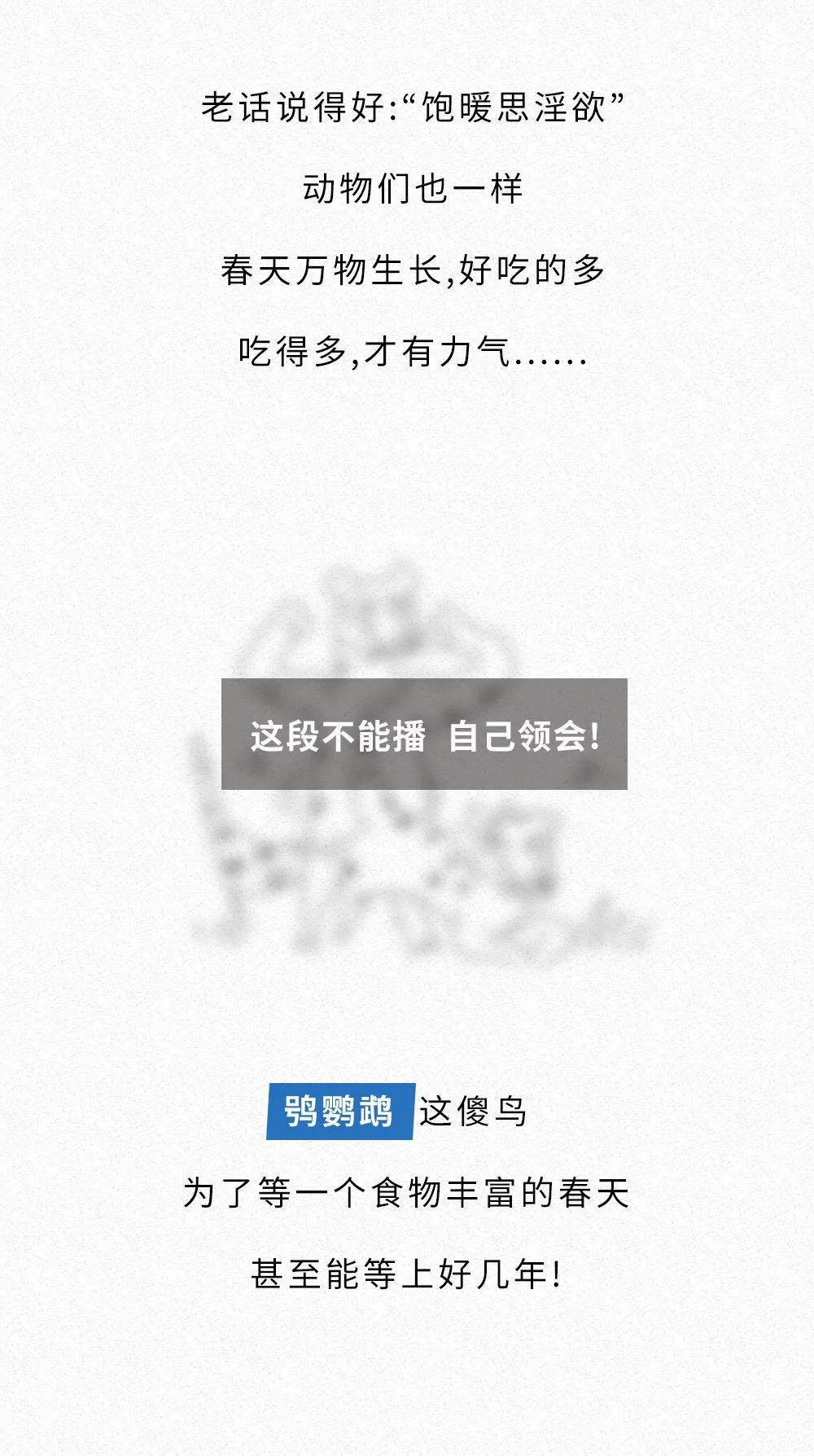 星辉开户-首页【1.1.1】
