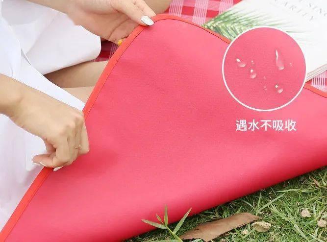 出去玩这么能少得了它,一垫多用,防水防潮野餐垫,可折叠,易收纳,超级便捷