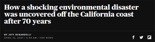 盛图开户美国加州连续数十年倾倒有毒废物入海,25%成年海狮患癌