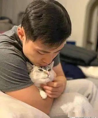 过敏男友拒绝碰猫,没想到如今男友却变成头号猫奴!