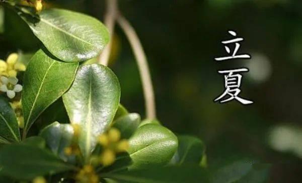 菲娱官网-首页【1.1.7】