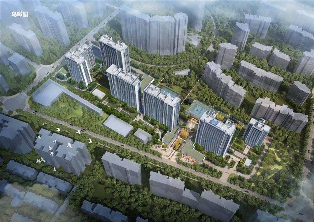 上海市人口数量_上海人口数据显示哪些新特征新趋势