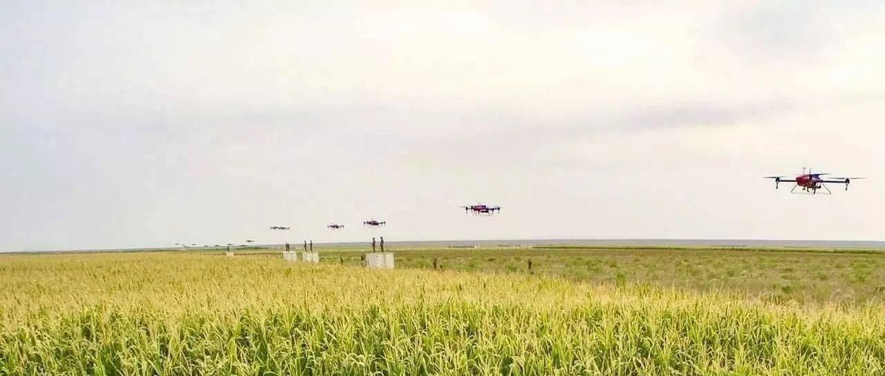 9月24日西安分公司小麦竞价采购交易公告