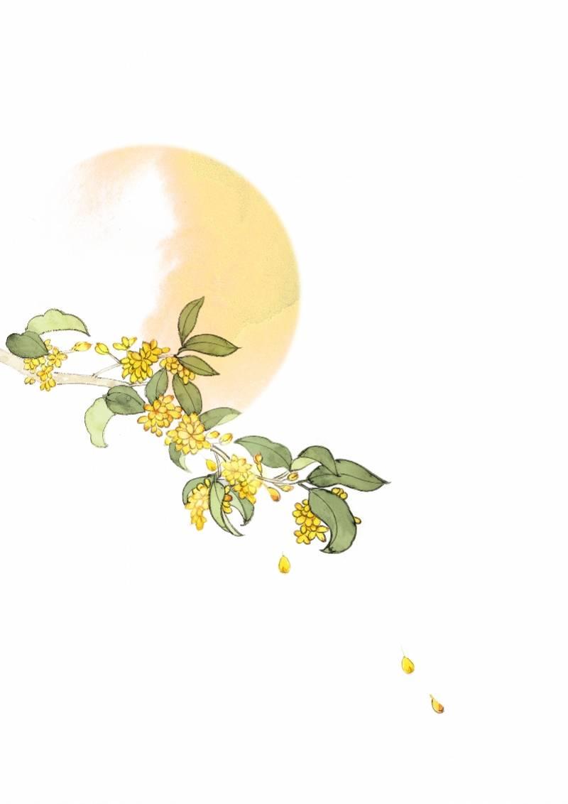 八月桂花香,从杭州到岭南