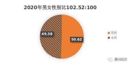 """宿州市市区人口_从""""七人普""""看宿州十年人口发展变化"""